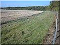 SP9242 : Moulsoe Old Wood by Robert Kerr