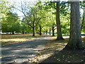 TQ3479 : Original carriage drive in Southwark Park by Ian Yarham