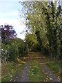 TM3072 : Footpath to Turkey Hall &amp; Heveningham Road by Adrian Cable