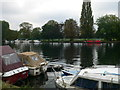 TQ1671 : The Thames upstream from Teddington Lock by Eirian Evans