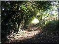 TR0261 : Footpath behind Abbotts Road, Faversham by pam fray