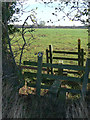 SK6330 : Double stile by Alan Murray-Rust