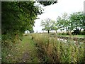 SK6683 : Chesterfield Canal towpath by Christine Johnstone
