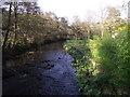SD7312 : Bradshaw Brook, Bradshaw by Philip Platt