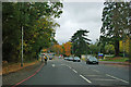 TQ4364 : A21 towards Bromley by Robin Webster