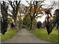 NO1223 : Greyfriars Burial Ground by David Dixon