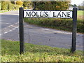 TM4282 : Moll's Lane sign by Adrian Cable