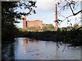 SJ9190 : Pear Mill and the River Goyt by Alistair Pooler