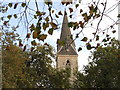TQ5786 : Bell tower of All Saints Church Cranham Essex by Richard Dunn