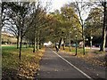 TQ3105 : Cycle Path east of The Level by Paul Gillett