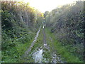 ST5864 : Stream running down the Byway by James Ayres