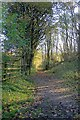 SK1682 : Public Bridleway up Pindale by Mick Garratt