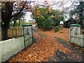 H4672 : Fallen leaves, Hospital Road, Omagh by Kenneth  Allen