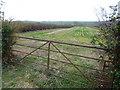 TL1386 : Field seen from High Haden Road by Marathon