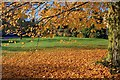 SK2569 : Village Green, Edensor by Mick Garratt