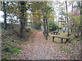 SJ6167 : Whitegate Way looking South past the picnic area by Dr Duncan Pepper