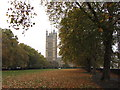TQ3079 : Autumn in Victoria Tower Gardens by Gareth James