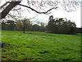 SJ6768 : Grazing pasture adjacent to Bostock Hall by Dr Duncan Pepper