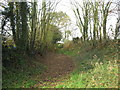 SJ6065 : Permissive bridleway Little Budworth by Dr Duncan Pepper
