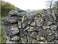 SK1566 : Dry stone wall, Bagshaw Dale by Peter Barr