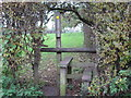SJ6564 : Stile &amp; Footpath from Church Hill to Court House Farm by Dr Duncan Pepper
