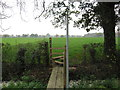 SJ6463 : Footbridge and Stile for Path from Hall Lane to Style Farm by Dr Duncan Pepper