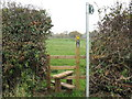 SJ6563 : Stile & Footpath to Church Hill by Dr Duncan Pepper
