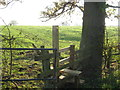 SJ6462 : Stile &amp; Path to Hilltop Farm by Dr Duncan Pepper