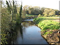SJ6762 : The River Weaver looking downstream by Dr Duncan Pepper