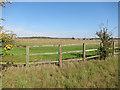 TL6555 : Stud farm field by Hugh Venables