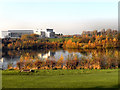 SJ9096 : Gorton Upper Reservoir and Wright Robinson Sports College by David Dixon