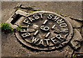 J3368 : Belfast Water Works cover, Belvoir, Belfast (1) by Albert Bridge
