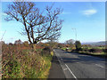 SJ9793 : Mottram Old Road by David Dixon