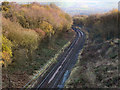SJ9793 : Railway Cutting, South of Hattersley by David Dixon