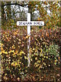 TM1773 : Denham Hall sign by Adrian Cable
