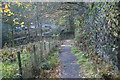 SD6811 : Path down to Barrow Bridge by Bill Boaden