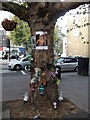 TQ3175 : Tree Memorial, Brixton by David Anstiss
