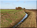 TL5067 : Ditch beside Bannold Drove by John Sutton