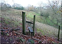SE0024 : Stile on Hebden Royd FP 88 by Humphrey Bolton