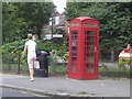 TQ2178 : Telephone box on South Parade, Turnham Green by David Howard