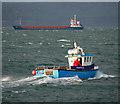 J5082 : The 'Blue Aquarius' in Bangor Bay : Week 49