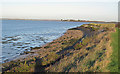 TL9204 : Creek, foreshore, river defences, footpath by Roger Jones
