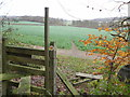 SP8403 : Wooden stile on the Chiltern Way         by Peter S
