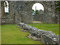 SN7465 : Strata Florida abbey church by Phil Champion