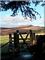SK2679 : Longshaw gateway with view of Carl Wark by Neil Theasby