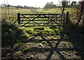 TQ3859 : Gate by Church Lane by Derek Harper