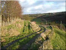 SE0023 : Footpath and driveway at Lower Lumb, Cragg Vale by Humphrey Bolton