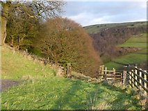 SE0023 : Gates at Lower Lumb Lodge by Humphrey Bolton