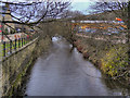 SD9904 : River Tame, Greenfield by David Dixon