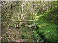 SJ9847 : Woodland path and footbridge in Broadoak Wood (Consall Wood) by Colin Park